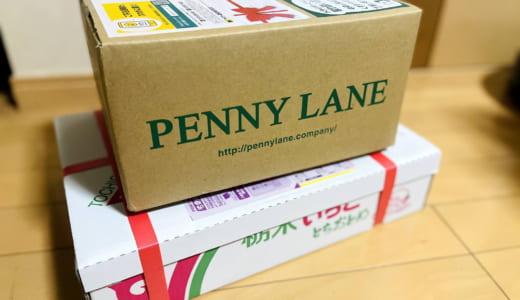 【活動レポ】ぱんてな「ベーカリーペニーレイン×とちおとめ」のパン開発プロジェクトにパンシェルジュとして参加しています