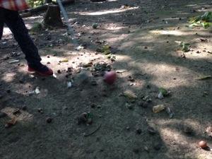 秋に森林でゴルフは、落ち葉だらけで回りにくい | 上田市民の森公園でマレットゴルフが大変だった(笑)