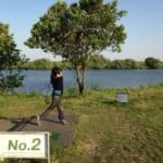 江戸川ラインゴルフ場。回り放題のショートコースは安くて、手前から寄せる練習ができて、親子で何度も行きたくなる場所でした!
