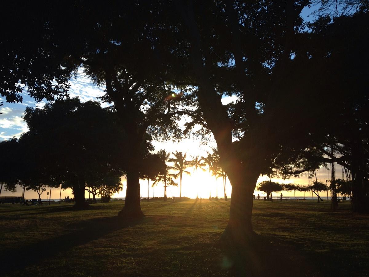 ホノルルマラソン 翌日の完走証受け取りは夕方がオススメ!晴れた日には絶景が祝福してくれます・・・
