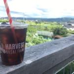 HARVEST NAGAI FARM | 浅間サンライン、上田〜軽井沢のドライブ時に立ち寄りたい四季を楽しめるカフェ