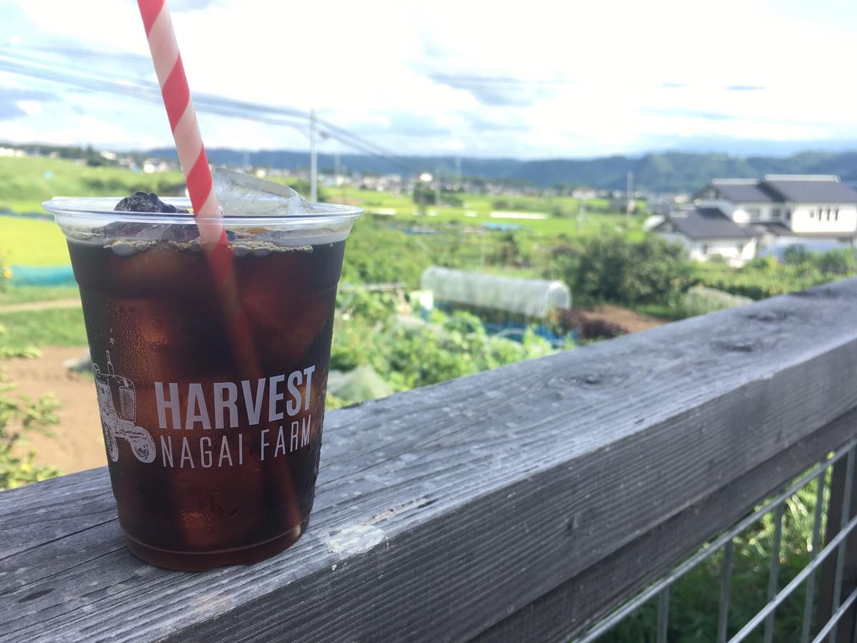 ハーベストナガイファーム|浅間サンライン沿いのカフェ、上田・軽井沢のドライブ時に立ち寄りたい四季を楽しめるお店