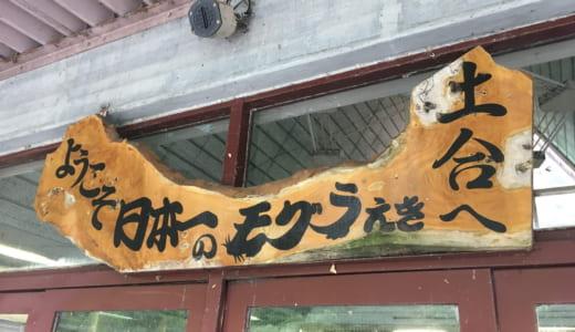土合駅(どあい) 日本一のモグラ駅に行ってきた!地下要塞のような駅の全貌、行き方、時刻表、おすすめ滞在方法は?