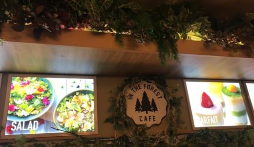 インザフォレストカフェ│スパジアムジャポンの岩盤浴ラウンジのカフェ、メニューや座席の雰囲気、滞在してみた感想は?