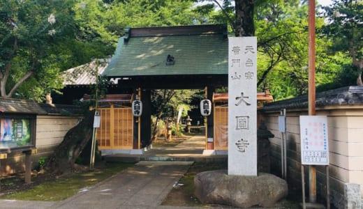 東久留米七福神めぐり│サイクリングで全部のお寺を回ってみた。所要時間や途中で寄りたいスポット、おすすめ持ち物は?