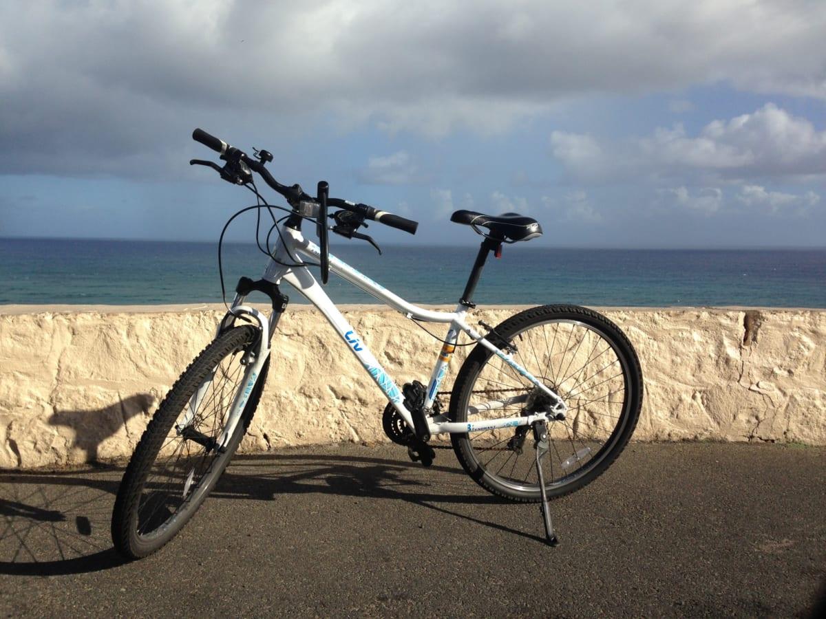 Chase Hawaii | ワイキキのど真ん中にある日本語OKのレンタサイクル屋さんを使ってみました。旅の行動範囲が一気に広がる!