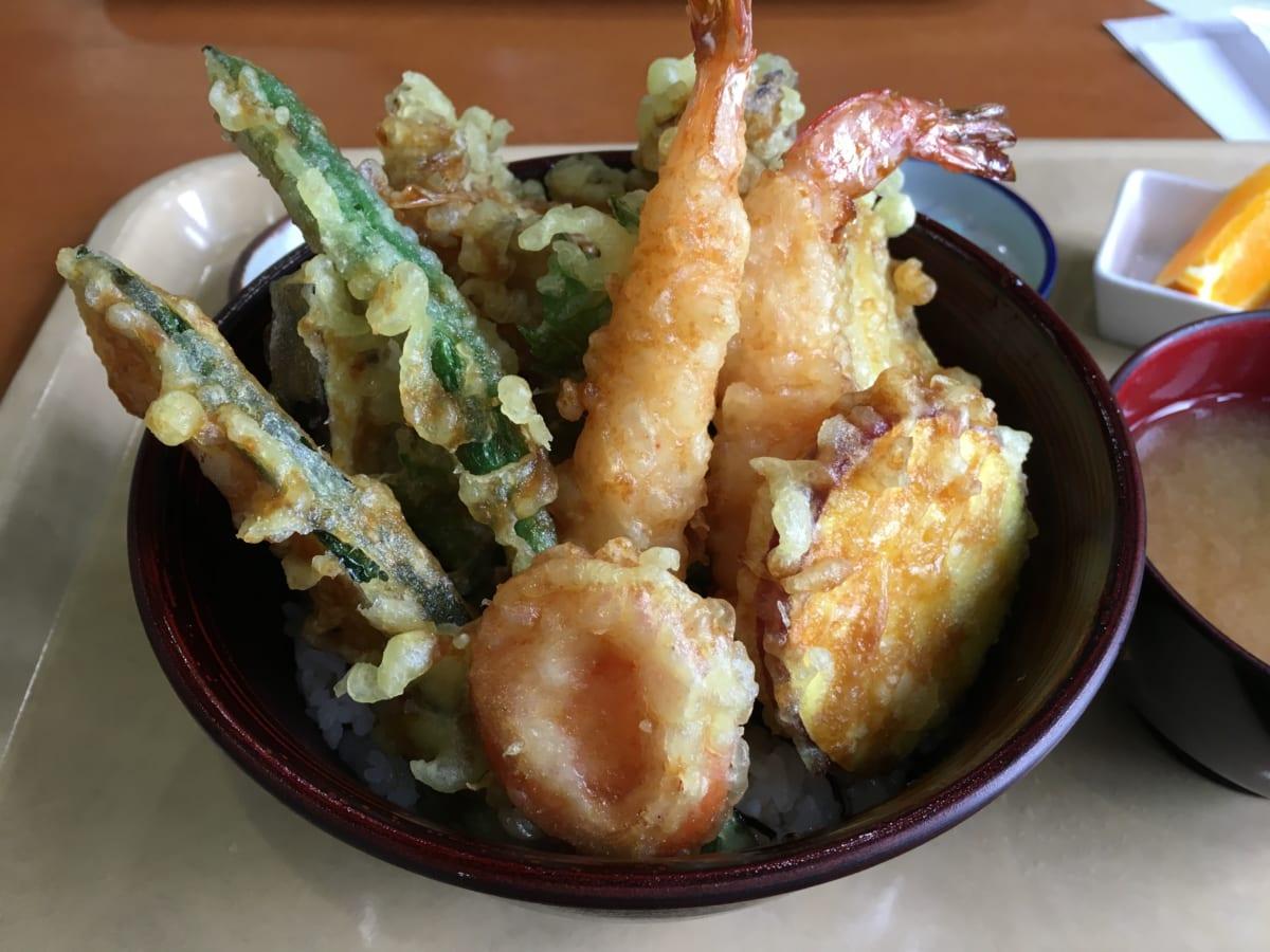とちの実│都民の森 東京でお空にいちばん近いレストラン。山を散策しながら自然とマイナスイオンを感じられる場所
