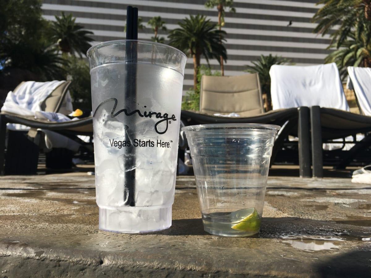 ザ・ミラージュ プールがめっちゃ極楽!ラスベガスの40度越え酷暑をしのぎつつ、インスタ映えな1枚に挑戦!