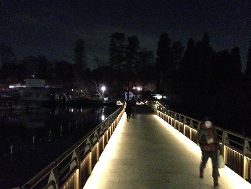 ペパカフェフォレスト@井の頭公園 | 森の中にあるアジアンダイニングは夜も楽しめるお店