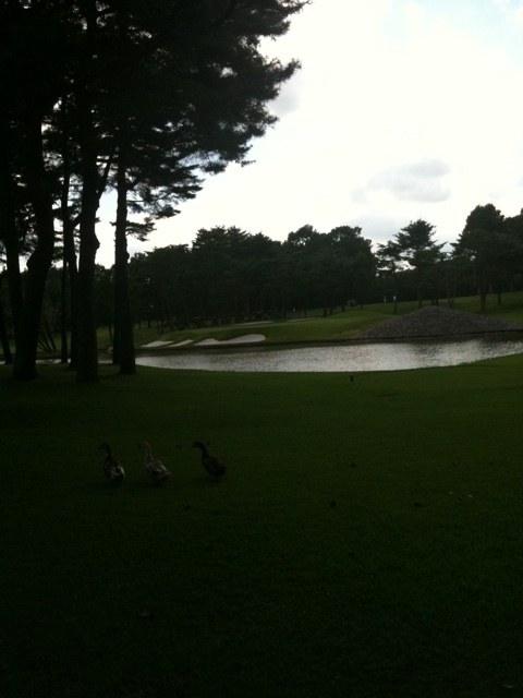 2012夏 ゴルフ合宿  2日目  「ラウンド編」、楽々ダブルボギーで上がるのを目指した仕上げのラウンド